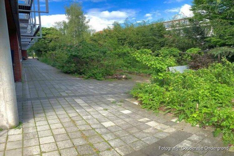 Voedselbostuinen op oude schoolpleinen