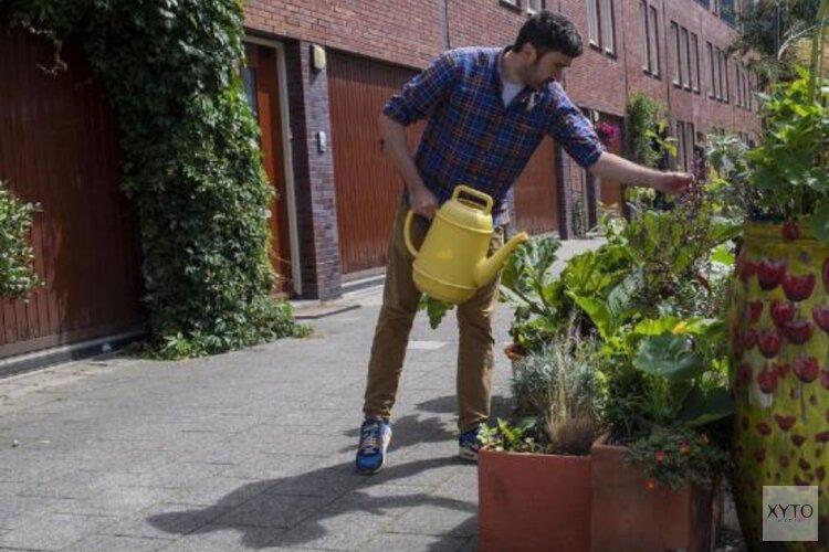 Rotterdammers maken de stad groener