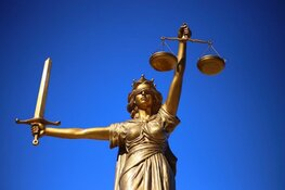 Twaalf jaar cel en TBS voor moord op 73-jarige man